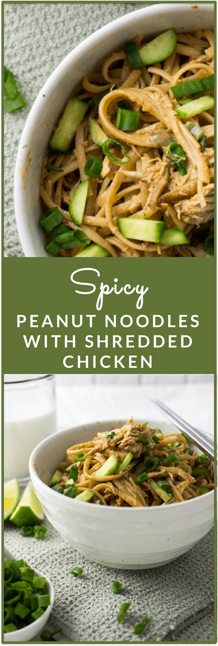 These spicy peanut noodles are perfect: thin noodles covered in a thick peanut sauce with shredded chicken. It's nicely complemented by finely chopped scallions and thin cucumber strips. There's also a hint of spiciness in the sauce, too!